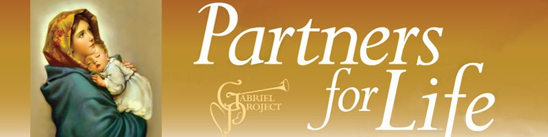 2012 Partners for Life